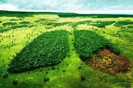 حس عذاب وجدان زیست محیطی(Eco-Guilt)، ابزاری برای سیاستگذاری زیست محیطی!